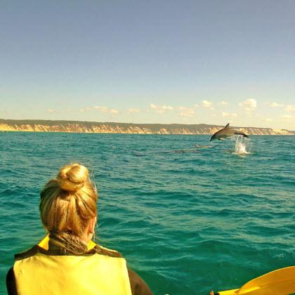 Rainbow Getaway and Epic Ocean Adventures Dolphin Kayak Tour